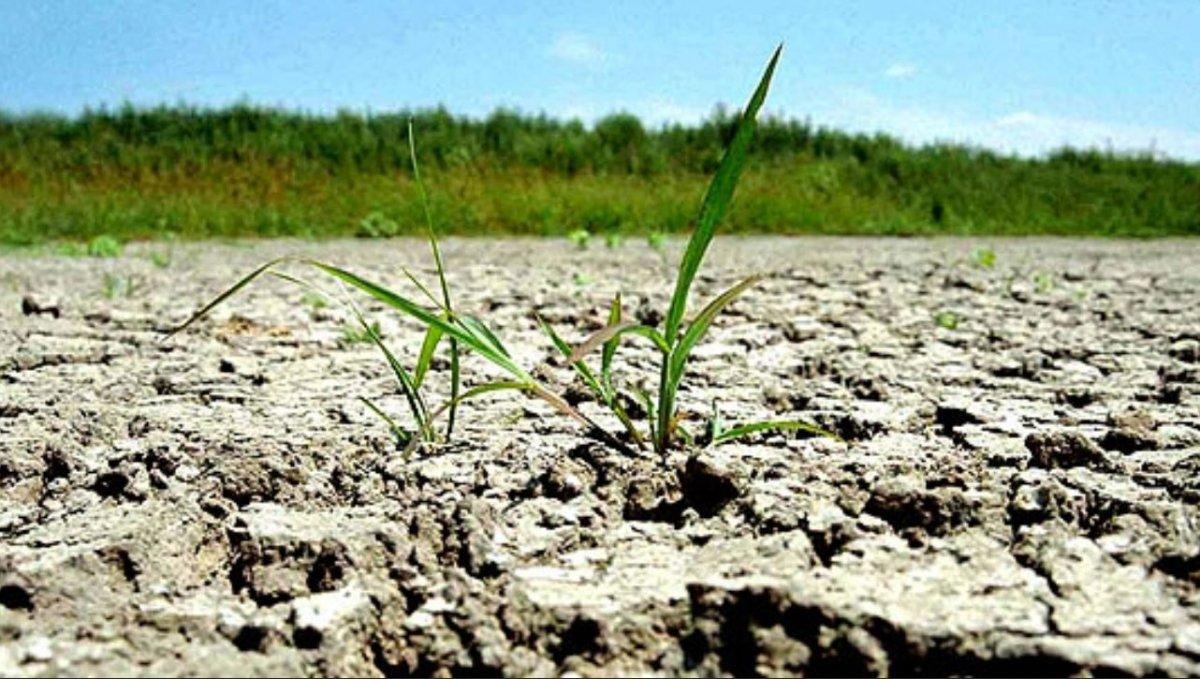 Calamitate cauzata de seceta
